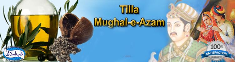 tilla mughal e azam large banner